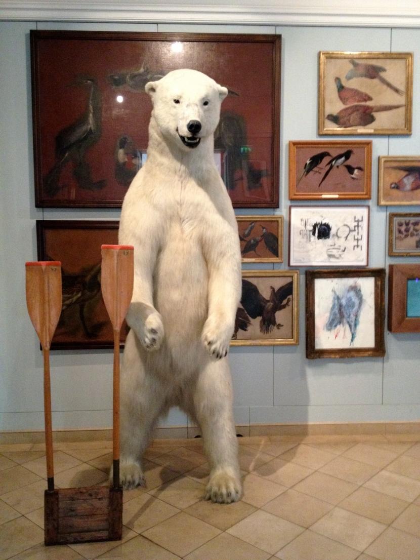 Bear at the Musée de la Chasse et de la Nature.