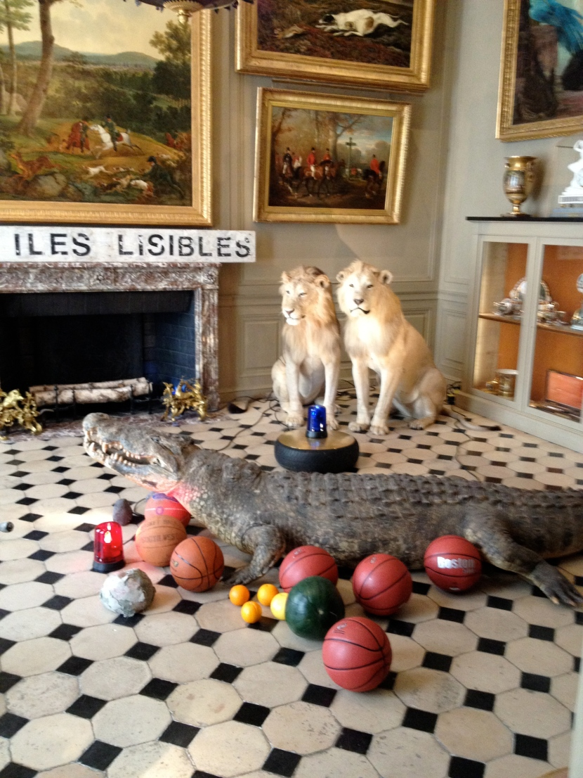 Lions, alligators, basketballs, oh my.